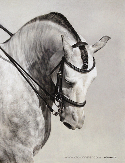 The Spanish Horse in Pastel