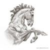 The Horses of Helios I