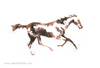 The Horse in Motion #6